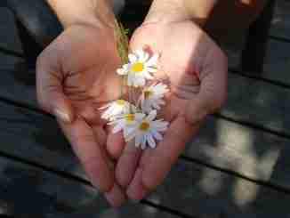Generosity: selfless or a bad idea? (c) KarinSieger.com