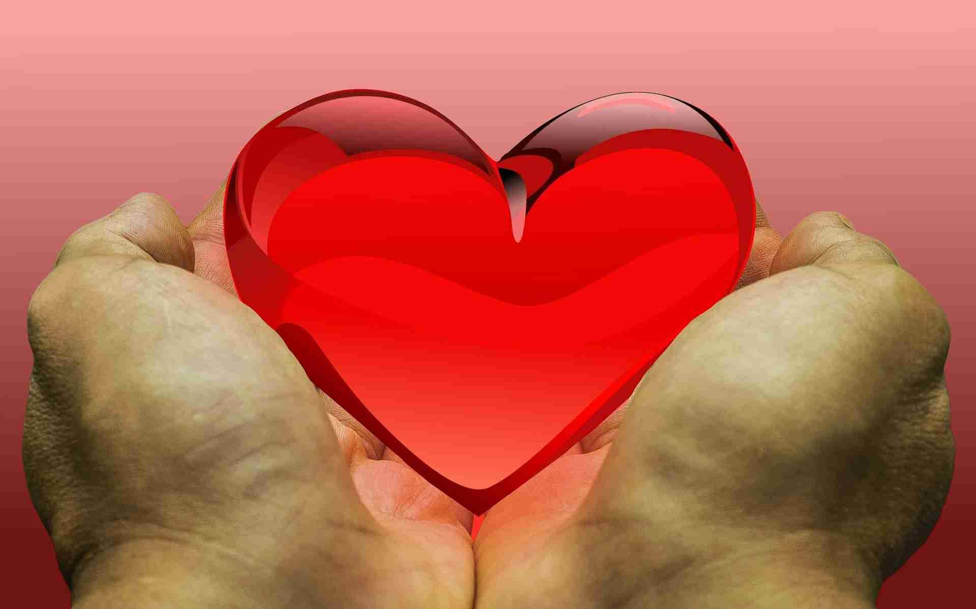 Body donation (c) KarinSieger.com